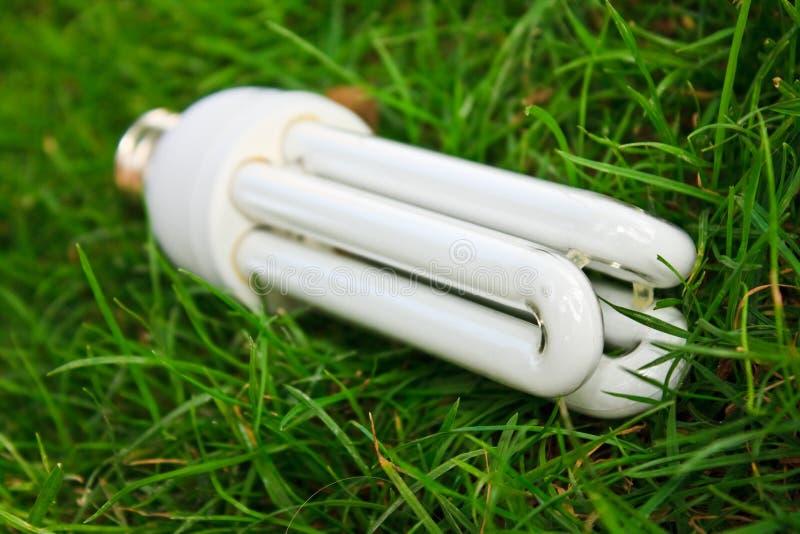 Energie - besparings gloeilamp in groen gras stock afbeeldingen