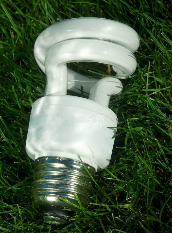 Energie - besparings gloeilamp op groen gras royalty-vrije stock afbeelding