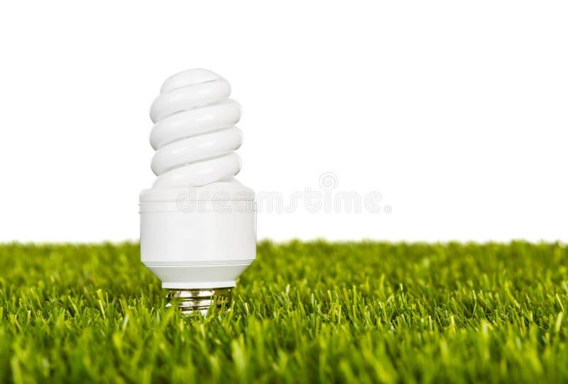 Energie - besparingslamp in groen enig gras stock foto's