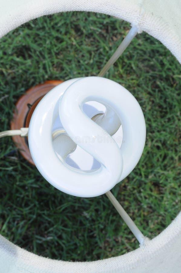 Energie - de Gloeilamp van de besparing met de Achtergrond van het Gras royalty-vrije stock fotografie