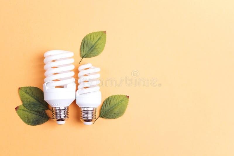 Energiesparende Glühlampe mit grünen Blättern Außer Energiekonzept lizenzfreies stockfoto