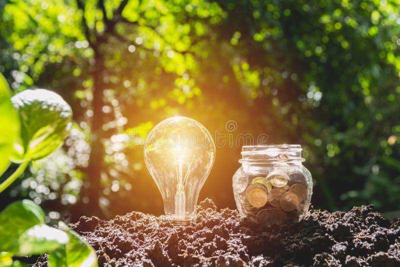 Energiesparende Glühlampe und Baum, die auf Stapeln Münzen wächst lizenzfreie stockfotos