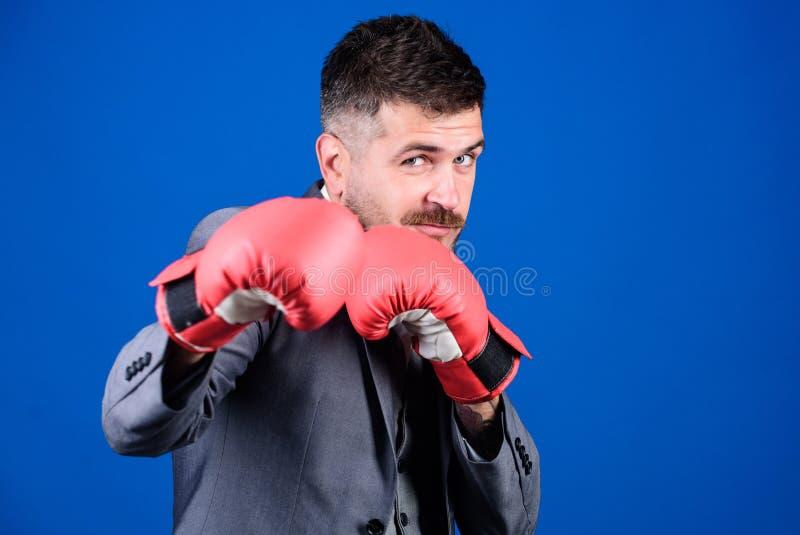 Energievoll Boxhandschuhe für Bärenfreunde Erfolg von Unternehmen und Sport leistungsstarker Mannboxer bereit stockfotos