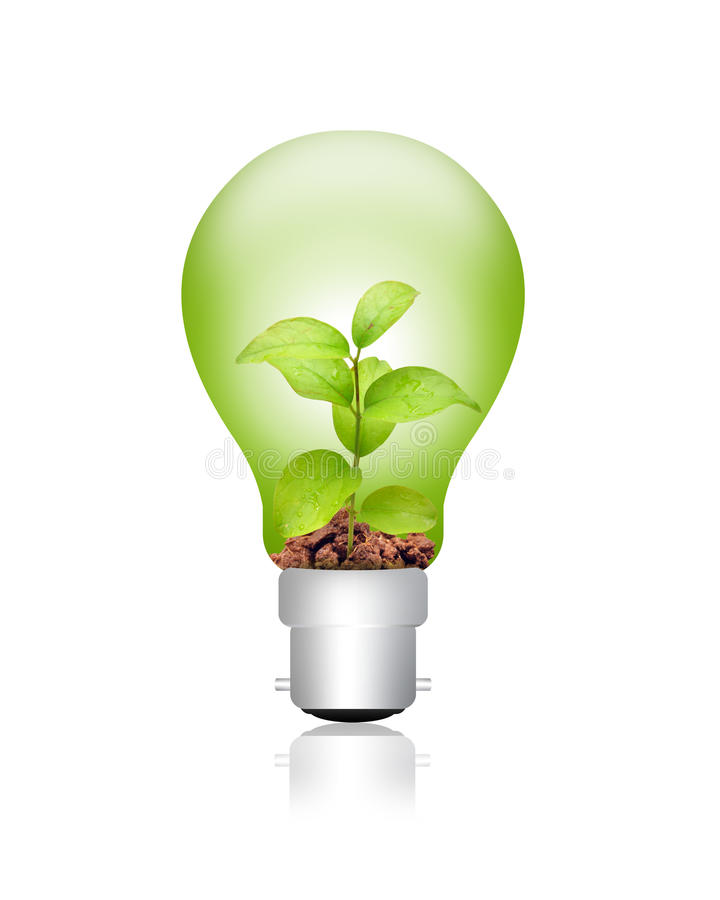 energigreen arkivfoton