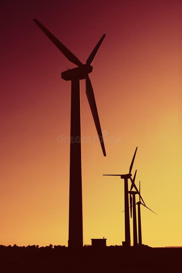 energii zieleń obrazy royalty free