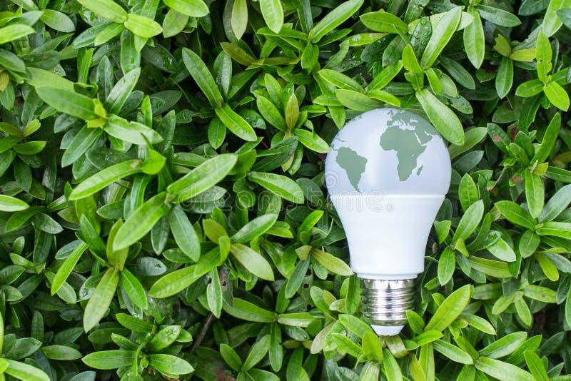 Energooszczędna DOWODZONA żarówka z oświetleniem w zielonym natury backgr zdjęcia stock