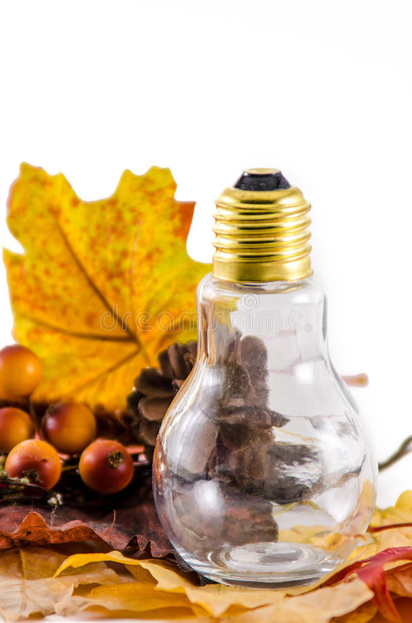 Energy bills in the Fall. Fall leaves and pinecone with light bulb symbolizing energy usage in the fall stock photo
