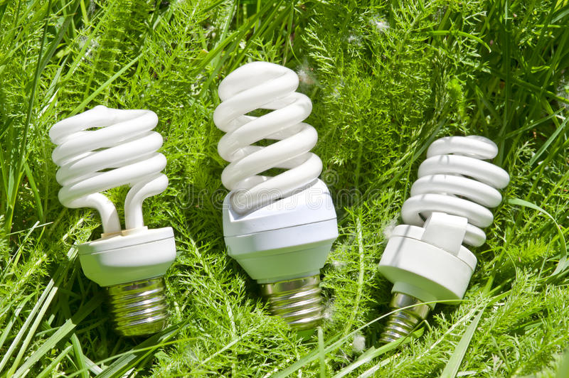 Energy efficient light bulbs. On green grass royalty free stock images