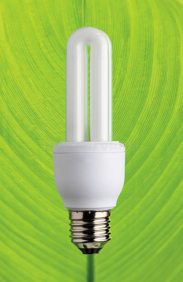 Download Energy Saving Compact Fluorescent Lamp Stock Photo - Image: 23275126