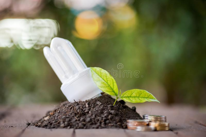 Energy saving With the environmentRenewable Energy royalty free stock photography