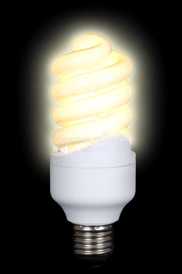 Energy saving fluorescent lamp. Lighting compact energy saving spiral fluorescent lamp on black background stock images
