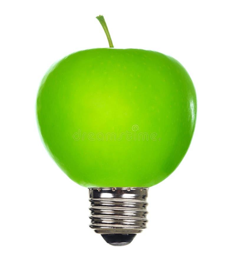 Download Energy saving lamp stock image. Image of power, leaf - 14716397