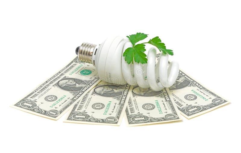 Energy saving light bulb stock photography