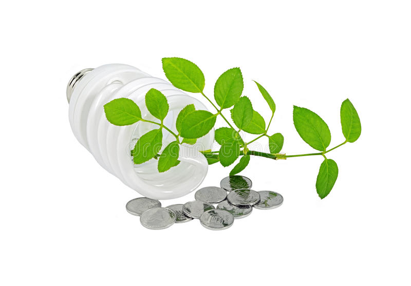 Energy saving light bulb, money and plant. On white royalty free stock photo