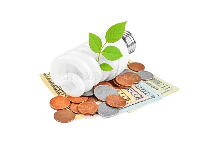 Energy saving light bulb, money and plant stock photos