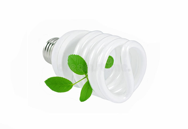 Energy saving light bulb and plant. On white background royalty free stock images