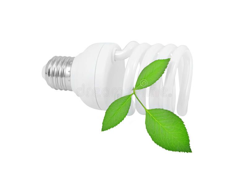 Energy saving light bulb and plant stock photography