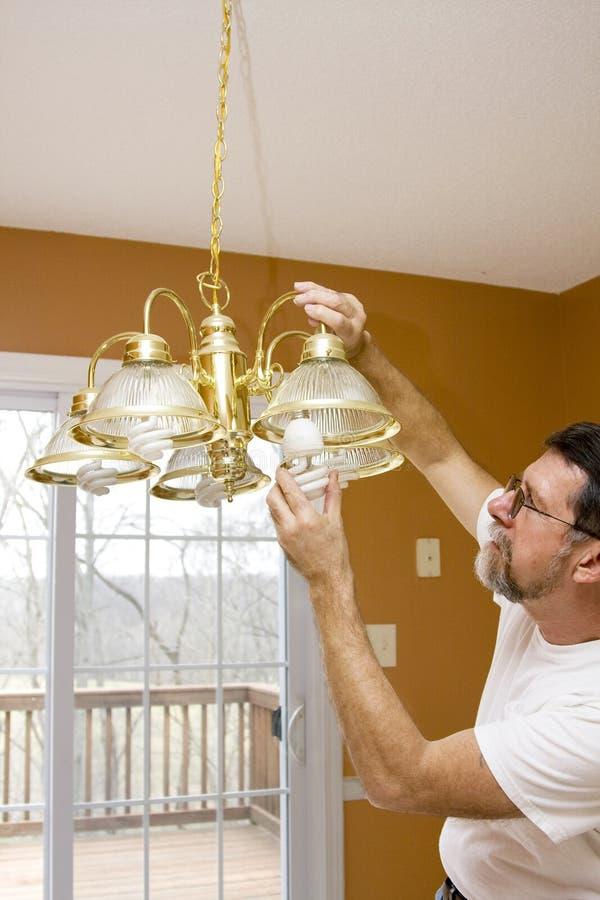 Download Energy saving light bulbs stock photo. Image of economic - 4246834