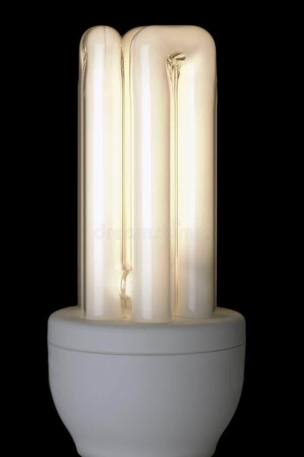 Free Energy Saving Lightbulb, Lit Against Black Stock Image - 7842921