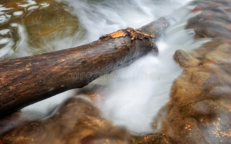 Energy of nature / Rapid forest stream with log royalty free stock photos