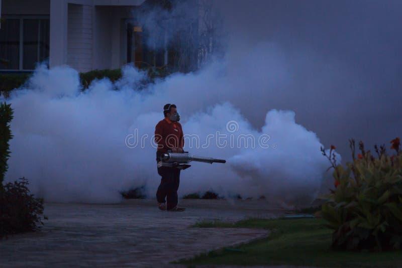 Enevoar-se para impedir a propagação da febre de dengue fotos de stock royalty free