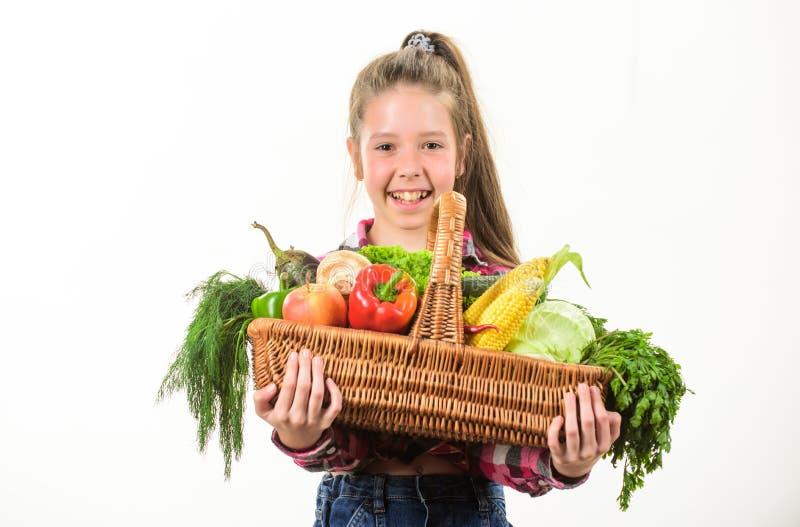Enfance dans la campagne Agriculteur d'enfant avec le fond blanc de récolte Style rustique d'enfant de fille avec l'enfant de réc images stock