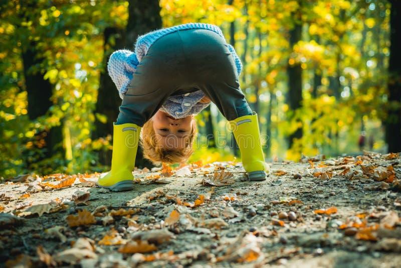 Enfance heureux Bonjour drôle dedans dans la forêt d'automne pour une promenade Enfant actif et concept confortable de vêtements  image libre de droits