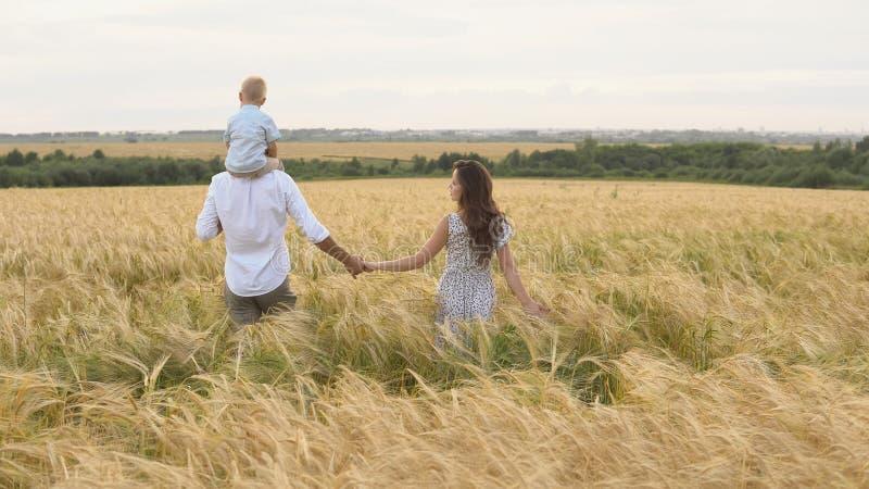 Enfance heureux, famille marchant sur le champ de blé images libres de droits