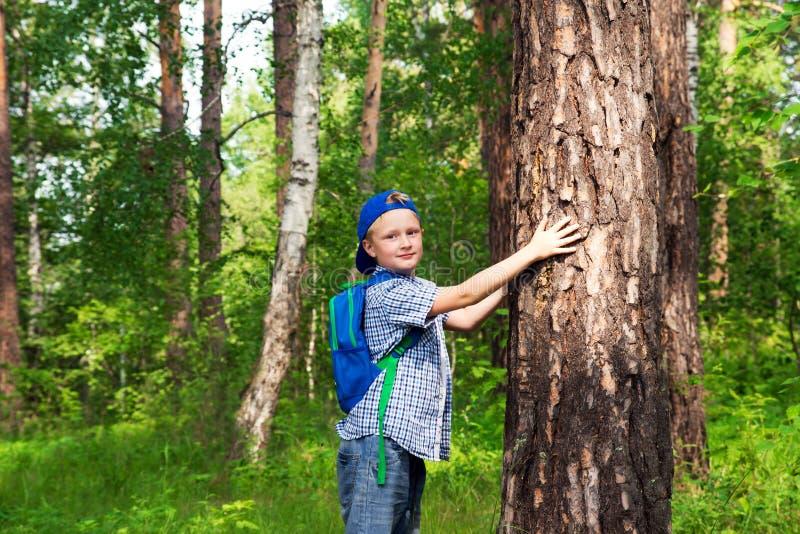 Enfant étreignant l'arbre photographie stock