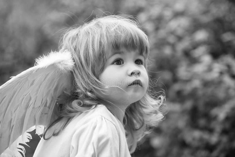 Enfant angélique Petit garçon dans des ailes d'ange image libre de droits