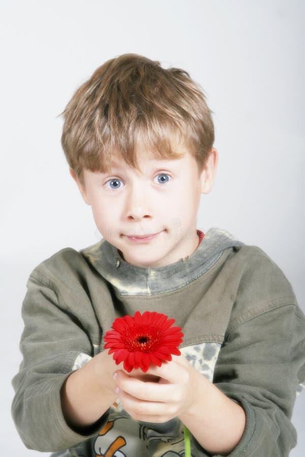 Enfant avec la fleur photographie stock libre de droits
