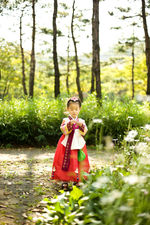 Enfant coréen portant un Hanbok traditionnel, jardin d'agrément photo stock