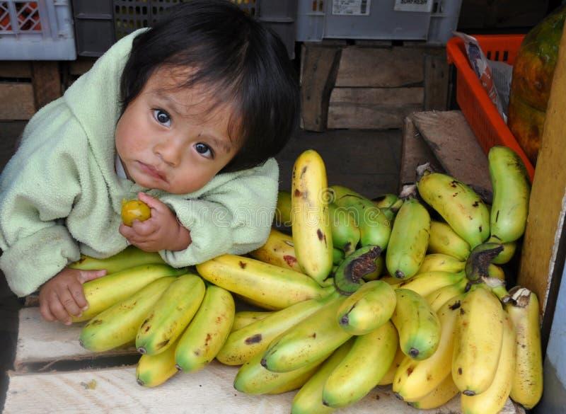 Enfant d'Ecuadorian avec des bananes images libres de droits