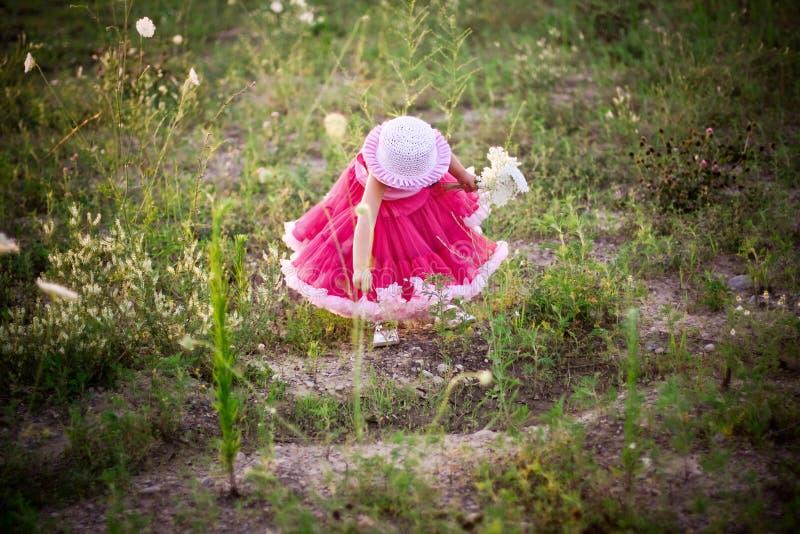Enfant Dans Un Domaine De Fleur Images Stock