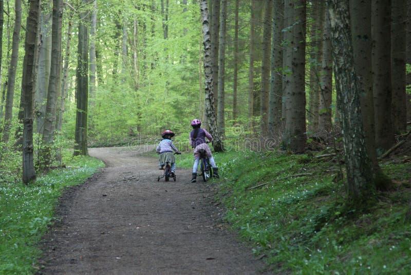Enfant de vélo photo stock