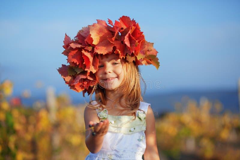 Enfant en automne image libre de droits