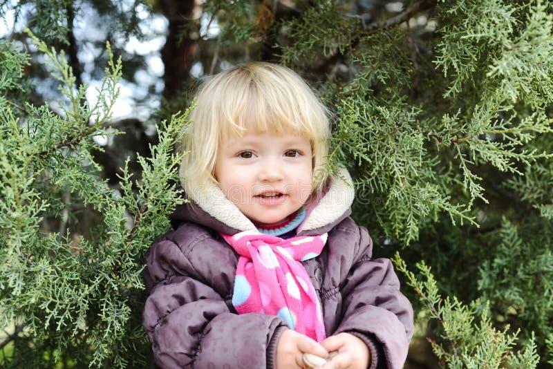 Enfant en bas âge caché dans les buissons photos libres de droits
