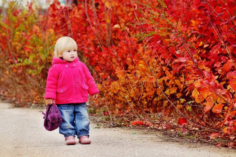 Enfant en bas âge d'automne image stock