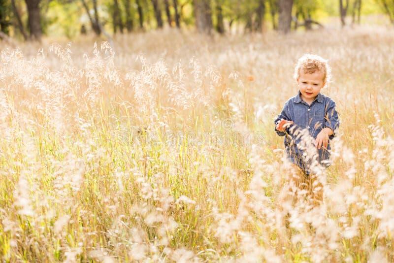 Download Enfant en bas âge mignon photo stock. Image du colorado - 45355286
