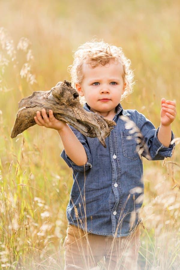 Download Enfant en bas âge mignon image stock. Image du mâle, humain - 45355319