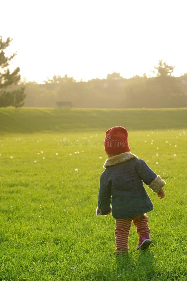 Enfant en bas âge qui apprécie le coucher du soleil images libres de droits