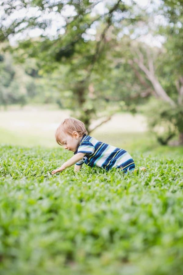 Enfant en bas âge rampant dans le jardin et l'arrière-cour l'explorant image libre de droits