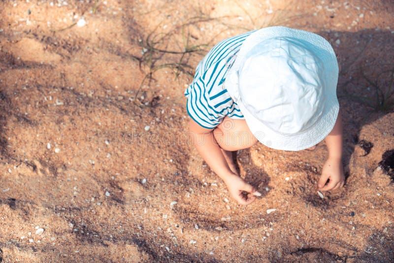 Enfant en bas âge seul d'enfant jouant avec des coquilles de sable et de mer sur le mode de vie heureux d'enfance de plage avec l image libre de droits