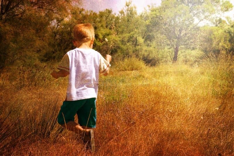 Enfant en nature photographie stock libre de droits