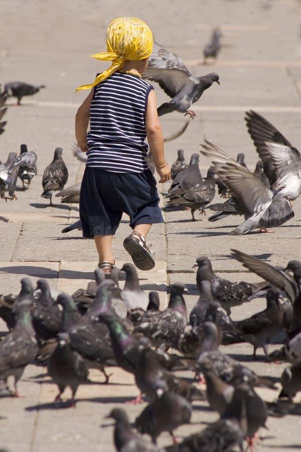 Enfant et oiseaux photos libres de droits