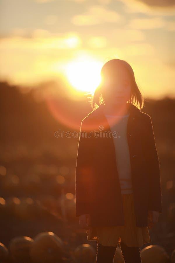 Enfant, fille, se tenant dans le domaine de potiron au coucher du soleil Image avec des lumières de bokeh Concept de liberté et d photos libres de droits