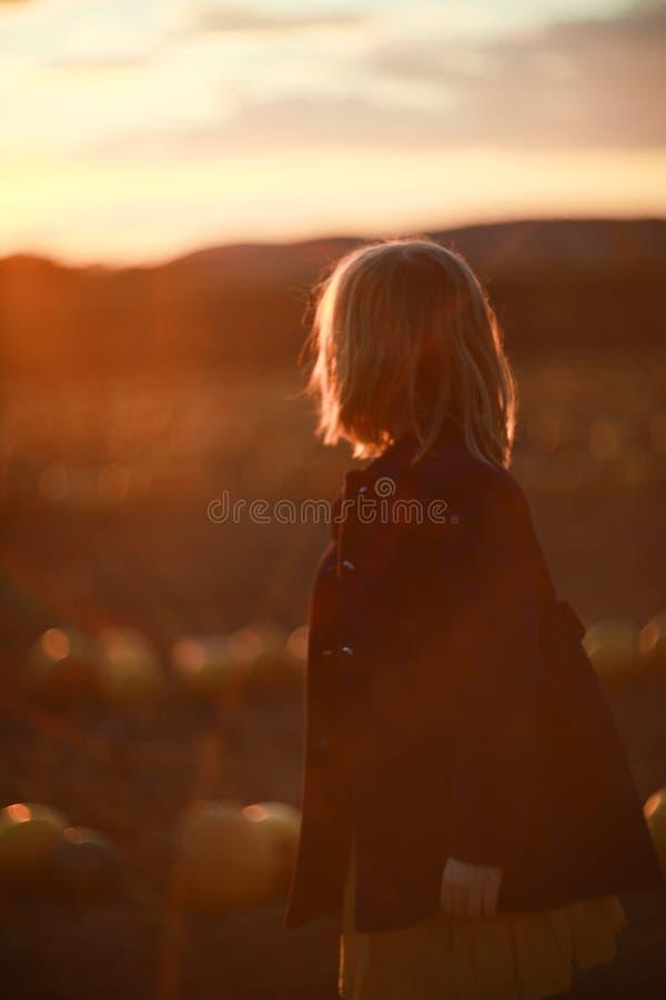 Enfant, fille, se tenant dans le domaine de potiron au coucher du soleil Image avec des lumières de bokeh Concept de liberté et d photo stock