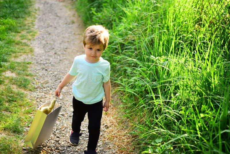 Enfant heureux en nature de floraison Enfant de petit garçon dans le petit enfant de forêt verte avec le jouet dans le sac à prov image libre de droits