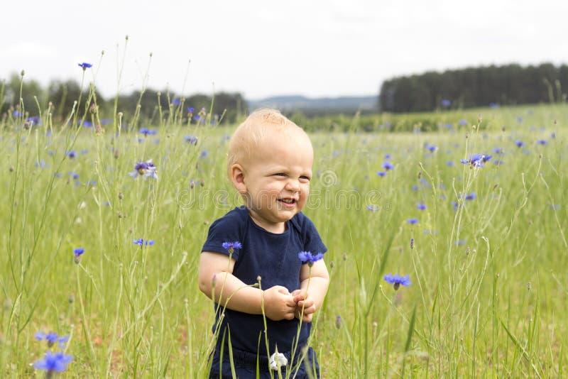 Enfant infantile de sourire drôle dans le domaine des bleuets bleus photos libres de droits