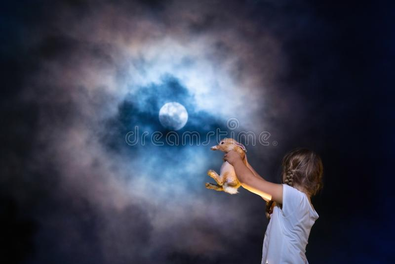 Enfant jouant avec le lapin d'animal familier à la pleine lune photos stock